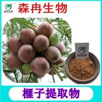 森冉生物 榧子提取物 香榧提取物 植物提取原料粉